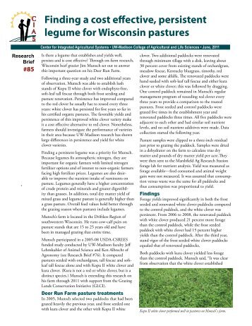 Finding a cost effective, persistent legume for Wisconsin pastures