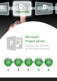 Flyer Project Server Methodik - innocate solutions gmbh