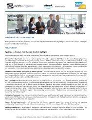 Newsletter Vol 33 Spotlight - Softengine