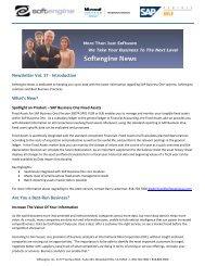 Newsletter Vol 17 Spotlight - Softengine Inc.