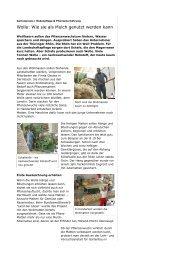 Originalartikel als PDF… - Geotex GmbH