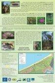 Ragakāpas dabas parks - Piekrastes biotopu aizsardzība un ... - Page 2