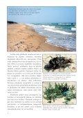 Dienvidkurzemes piekraste - Piekrastes biotopu aizsardzība un ... - Page 6