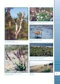 protection and management of coastal habitats in latvia - Piekrastes ... - Page 5