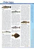 """""""Zivju Lapa"""" Nr.4(20) (13.08.2013.) - Latvijas Lauku konsultāciju un ... - Page 2"""