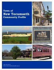 New Tecumseth Community Profile - April 2011 - County of Simcoe