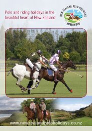 to download our brochure - New Zealand Polo Holidays at ...