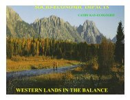 SOCIO-ECONOMIC IMPACTS WESTERN LANDS IN THE BALANCE