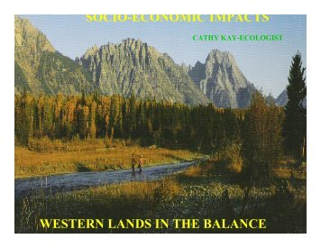 SOCIO-ECONOMIC IMPACTS WESTERN LANDS IN THE BALANCE