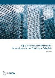 BITKOM-Leitfaden_Big_Data_und_GM-Innovationen_06Febr2015