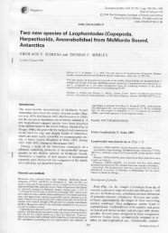 Two new species of Laophontodes (Copepoda ... - ResearchGate