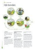 Heile modulen - Opplysningskontoret for brød og korn - Page 3