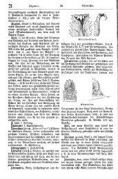 Kunstlexikon. Ein Handbuch für Künstler und ... - Haff Verlag