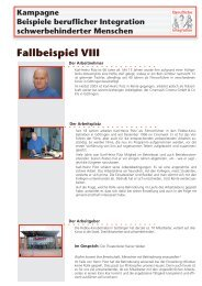 Fallbeispiel VIII - Behindertenbeauftragter des Landes ...