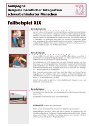 Fallbeispiel XIX - Behindertenbeauftragter des Landes ...