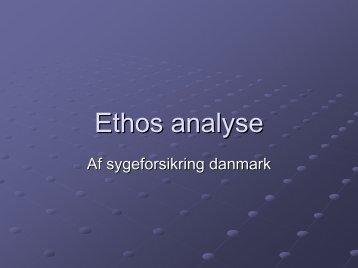 Ethos analyse (.pdf)