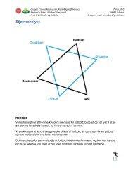 Stjerneanaylse fra rapport 1 - 2. semester (.pdf)