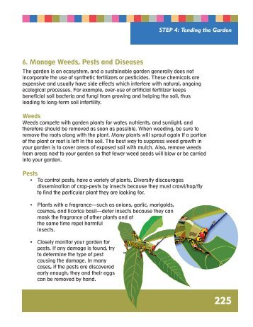 Weed, Pest, Disease Management - 4-H Africa Knowledge Center.
