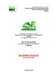 RELATÓRIO TÉCNICO - bioten