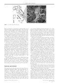 View - Dipartimento di Studi Geologici e Ambientali - Università ... - Page 2