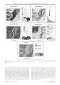 View - Dipartimento di Studi Geologici e Ambientali - Università ... - Page 5