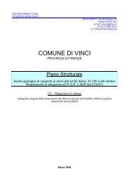 C3 Relazione di Sintesi - Unione dei Comuni del Pratomagno