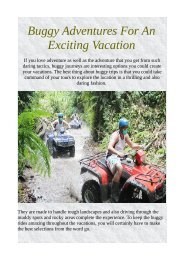 Buggy Adventures For An Exciting Vacation
