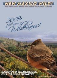 SABINOSO WILDERNESS BILL PASSES SENATE! - New Mexico ...