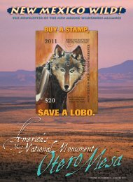 Summer 2010 Newsletter - New Mexico Wilderness Alliance