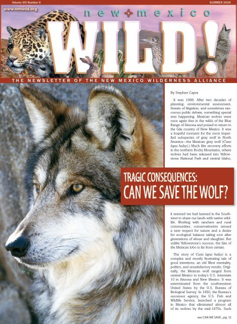 CAN WE SAVE THE WOLF? - New Mexico Wilderness Alliance