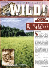 WILDERNESS - New Mexico Wilderness Alliance