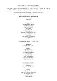 Seznam komisí RM pro volební období 2010-2014-WEB