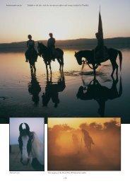 Travels on a Marwari Horse - Henry Dallal