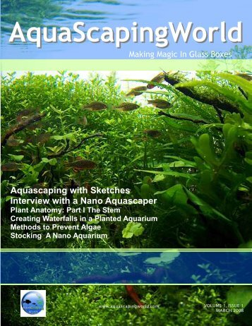 AquaScapingWorld - Blog