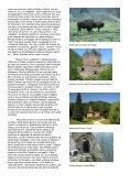 algoritm literar 5 - Page 5
