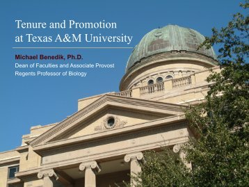 Tenure and Promotion at Texas A&M University - Office of the Dean ...