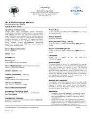 HAM56 (Macrophage Marker) - BioCarta