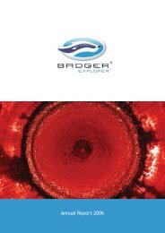 BXPL Annual Report - 2006 (.pdf)