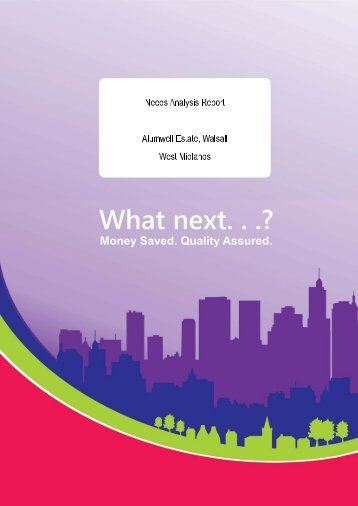 Click here to read the Needs Analysis report - Wider Impact