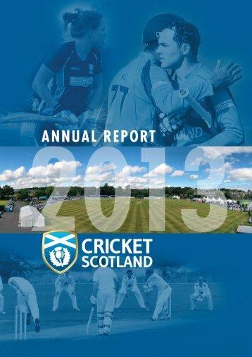 CS Annual Report 2013