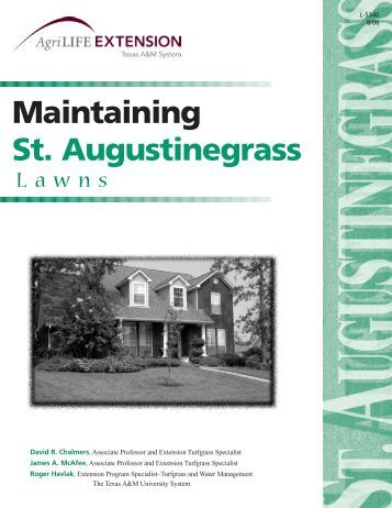 Maintaining St. Augustinegrass Lawns - Texas AgriLife Extension ...