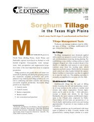 Sorghum Tillage in the Texas High Plains - Publications Soil and ...