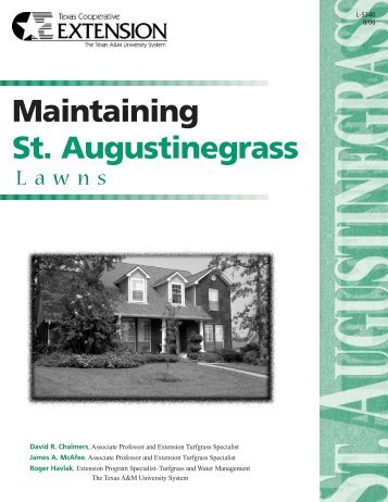 Maintaining St. Augustine Grass Lawns - McLennan