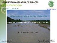7.Análisis_Estrategias - Universidad Autónoma de Chiapas