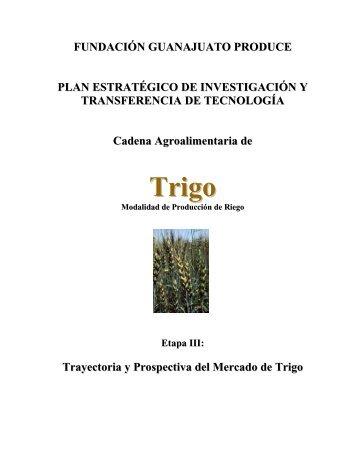 Cadena Agroalimentaria del Trigo - OEIDRUS-BC