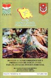 hongos ectqmicorrizógenosy produccion de inoculanties - Cofupro