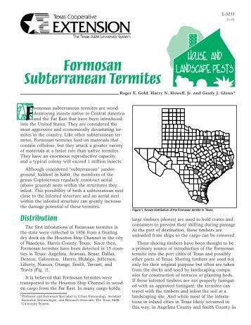 Formosan Subterranean Termites - Live Oak County