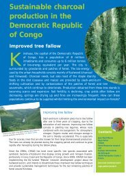 Sustainable charcoal production in the Democratic Republic of Congo