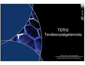 TER!2 Tevékenységelemzés - AAM Vezetői Informatikai Tanácsadó ...