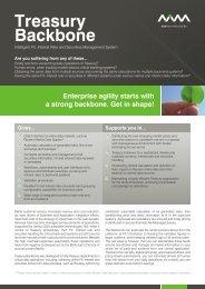 Flyer: Treasury Backbone